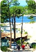 camping pilat camping dune du pyla le petit nice bassin d 39 arcachon. Black Bedroom Furniture Sets. Home Design Ideas